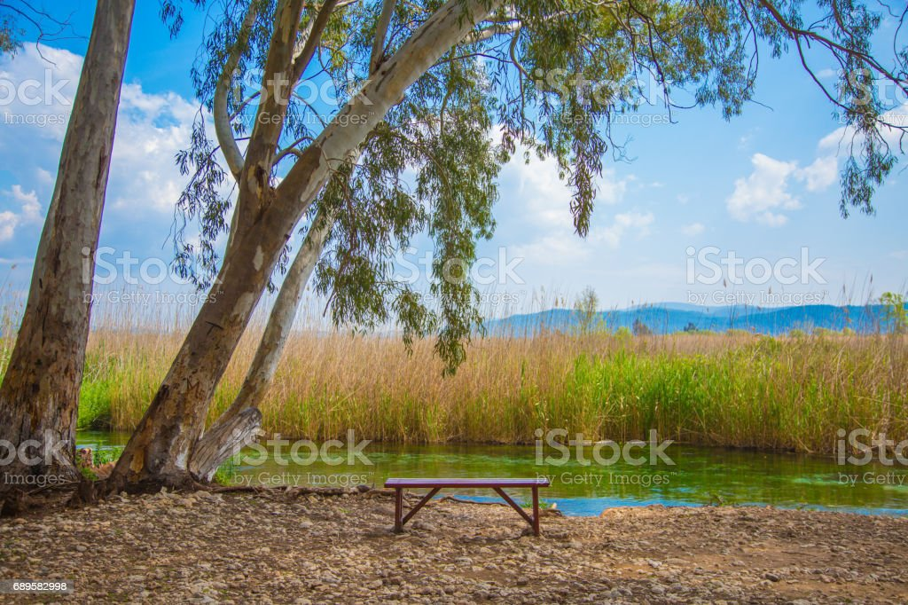 A bench near the river stock photo