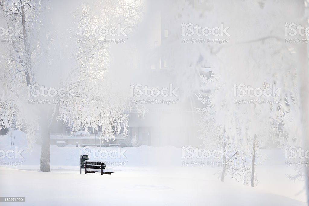 Bench on the frozen riverbank royalty-free stock photo