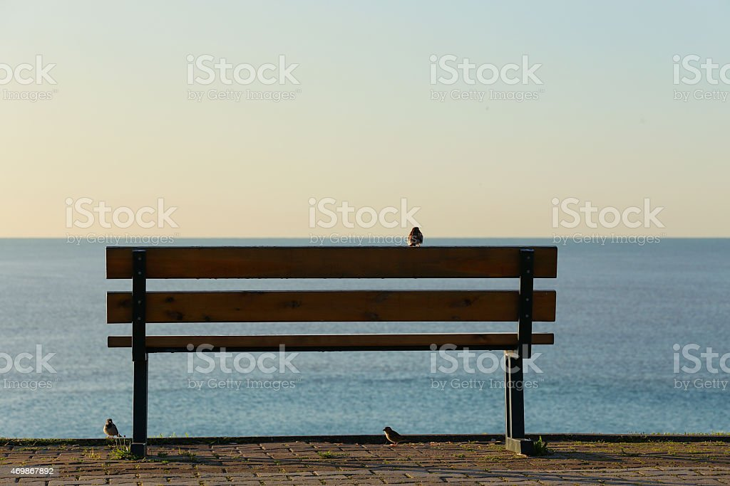 bench stock photo