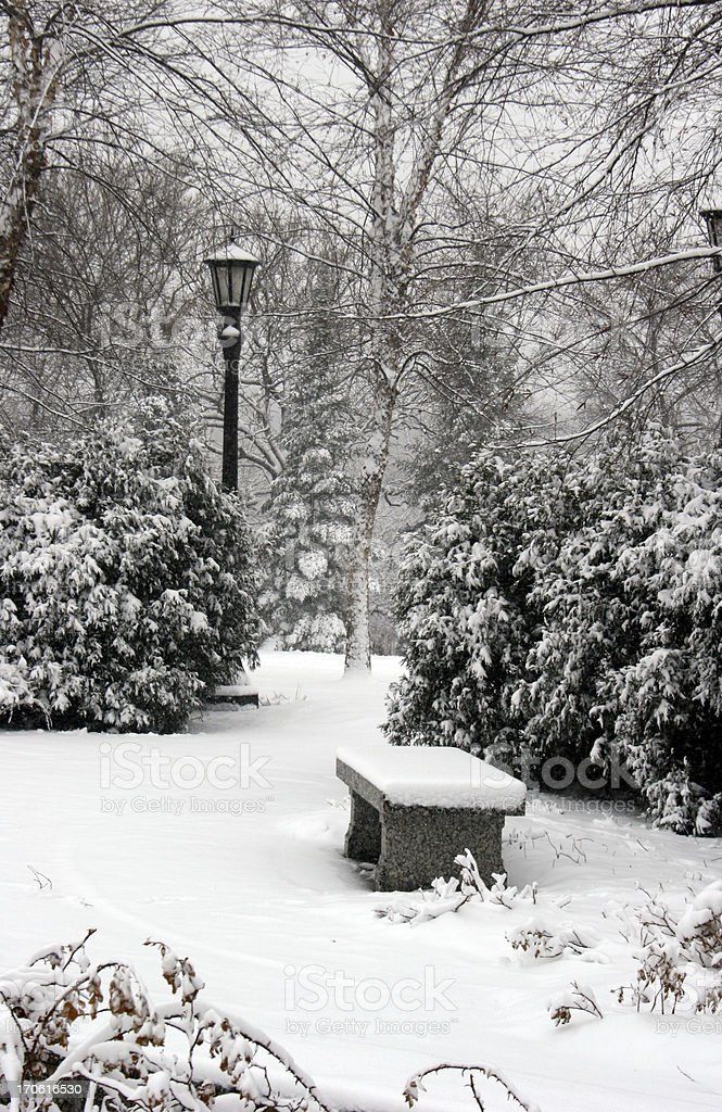 Bench, shrubs, and lamppost in a snowy wooded area.  royalty-free stock photo