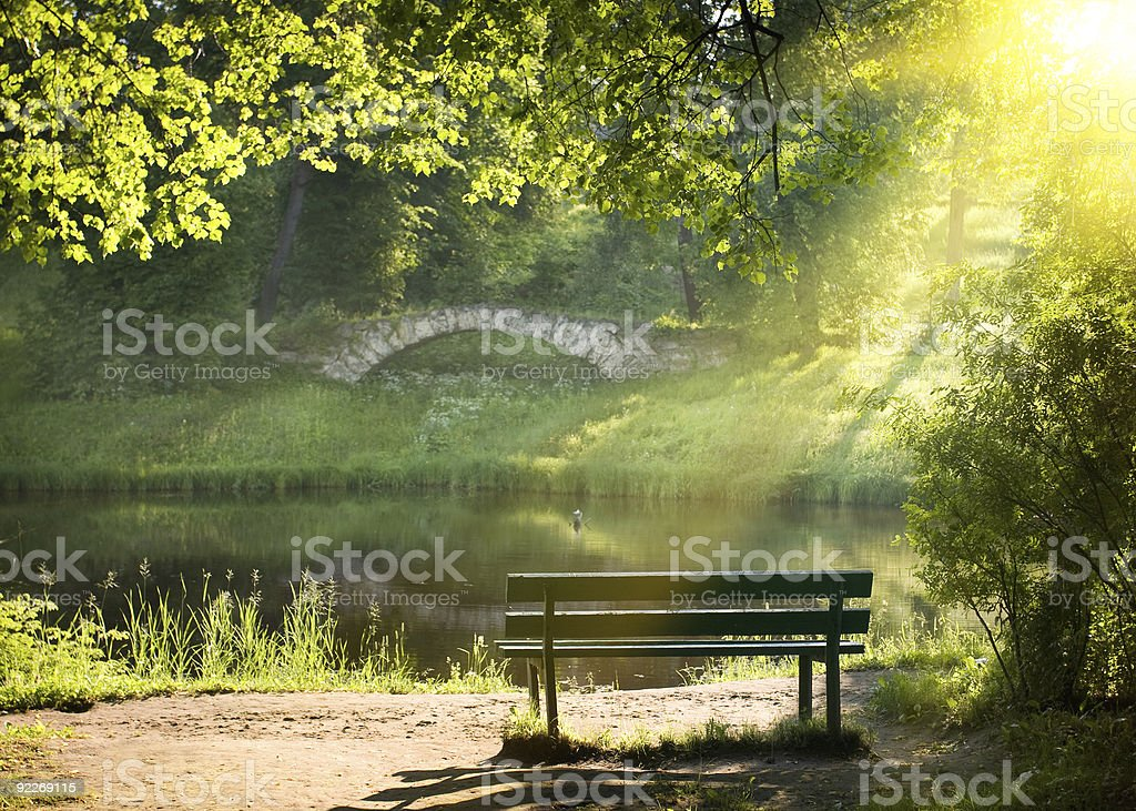 Bench sitting in beautiful scene in bright sunlight stock photo