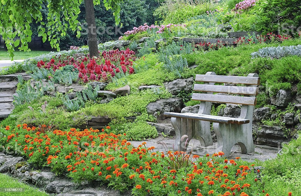 Bench surrounded by flowerbeds, decorative plants in a summer park royalty-free stock photo