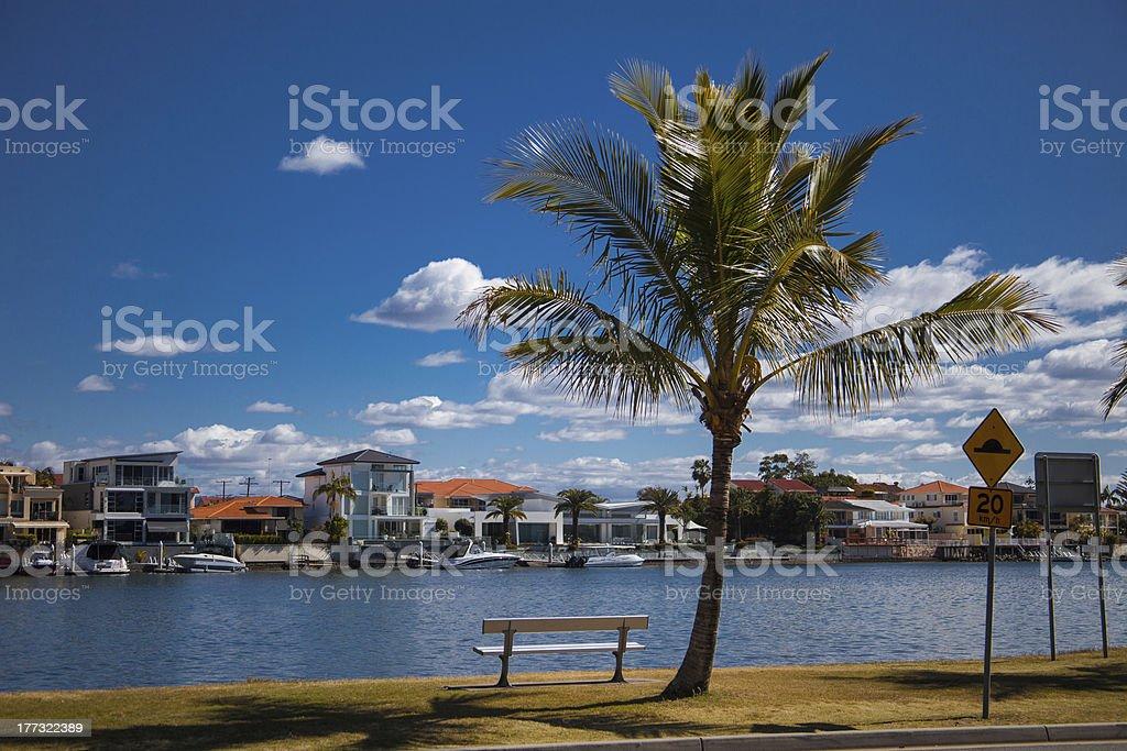 Bench under palm tree on Budds Beach, Gold Coast stock photo