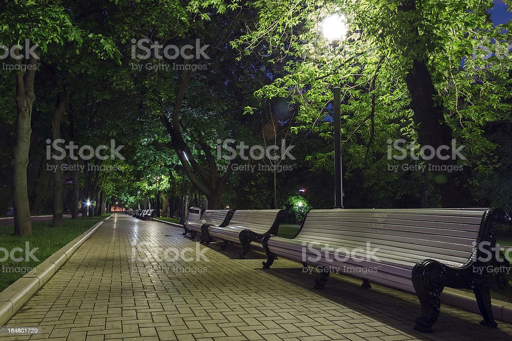 benches and pavement in the light royalty-free stock photo
