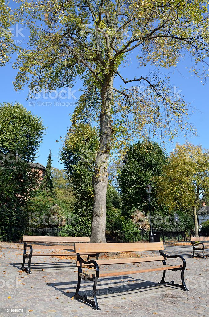 Benches by River Dee in Chester royalty-free stock photo