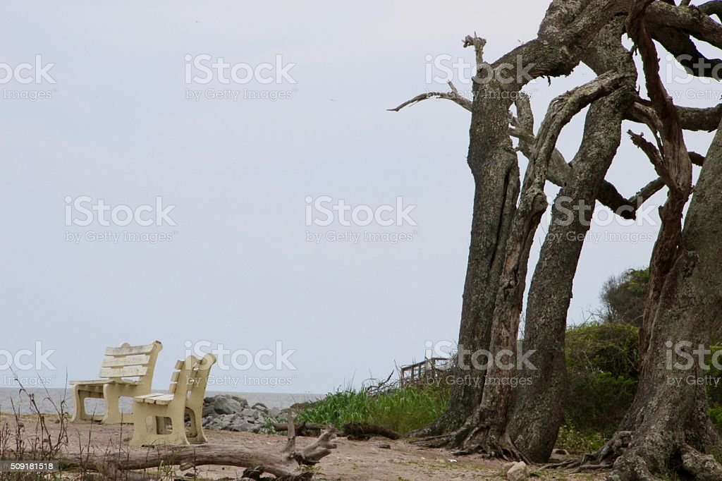Benches by the Ocean royalty-free stock photo