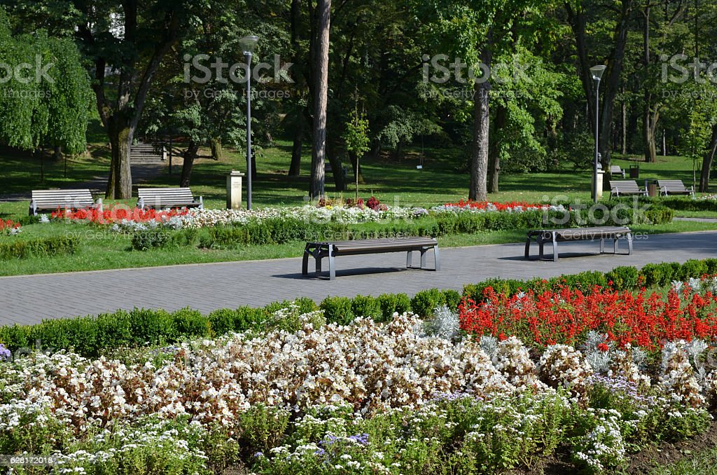 Benches in Park stock photo