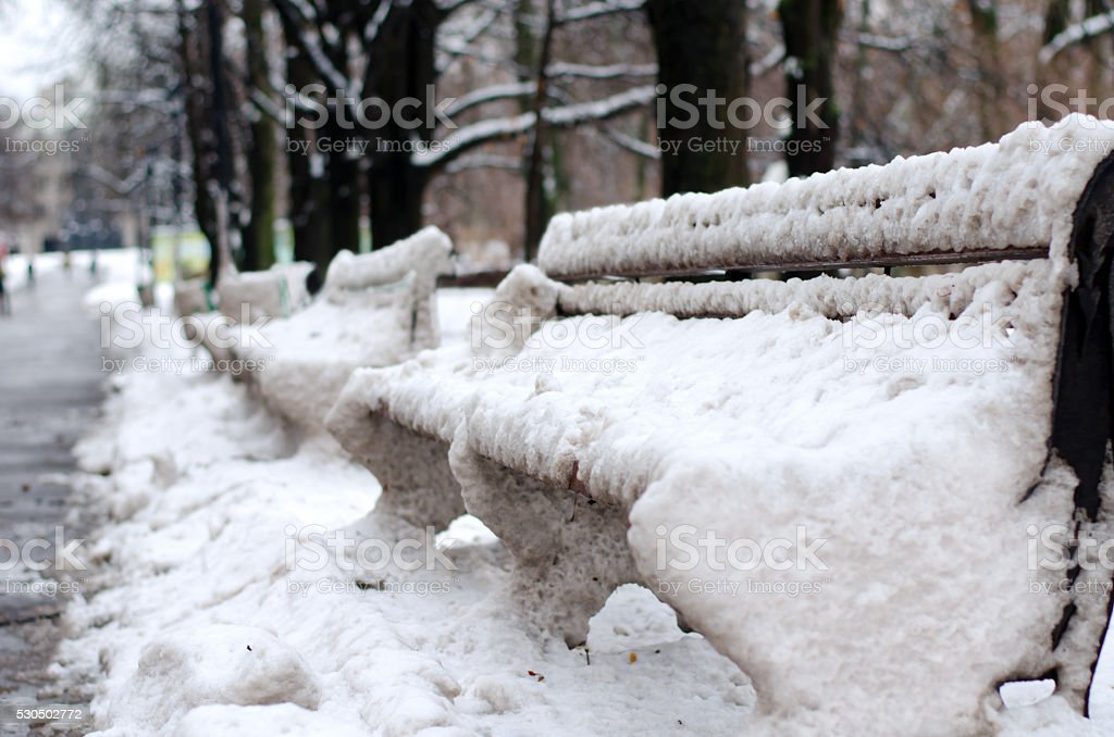 Benches in the park, covered with snow. Horizontal view stock photo