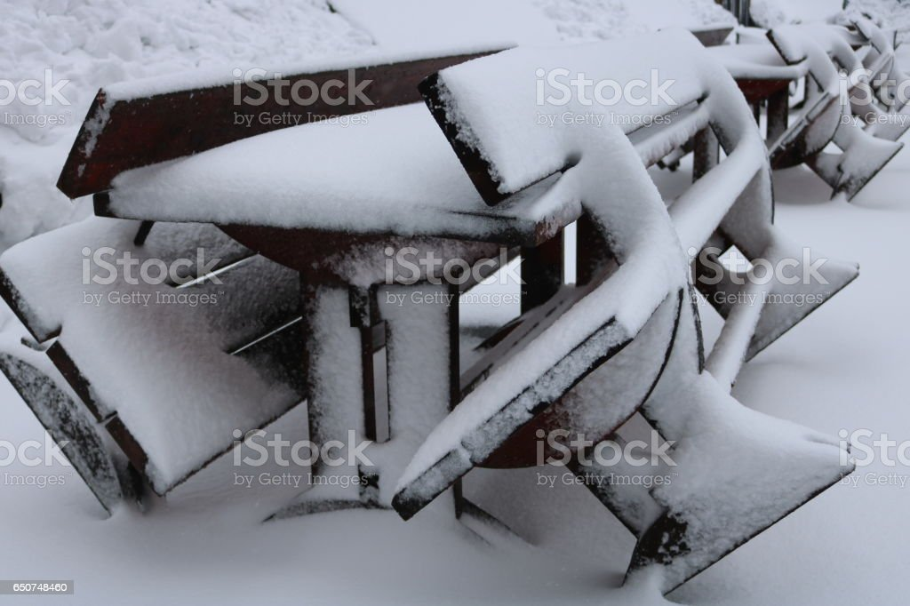 Benches in the park, covered with snow stock photo
