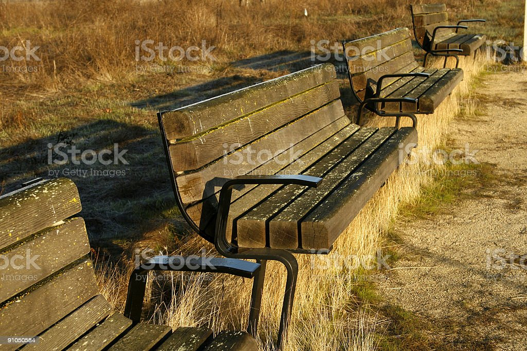 Benches on a cold morning stock photo