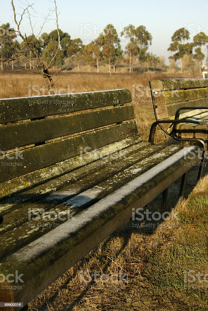 Benches on a winter morning stock photo