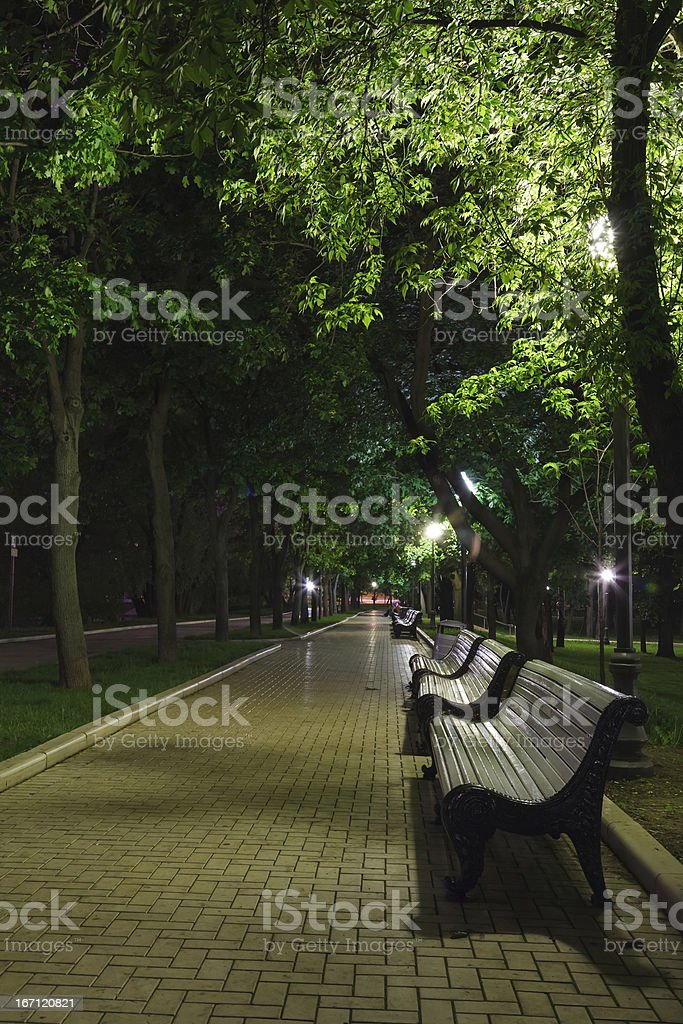 benches on the pavement royalty-free stock photo