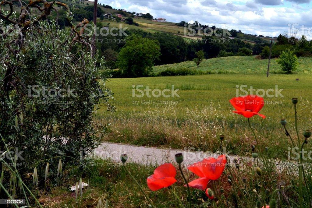 Benevento, Campania. L'Italia del sud stock photo