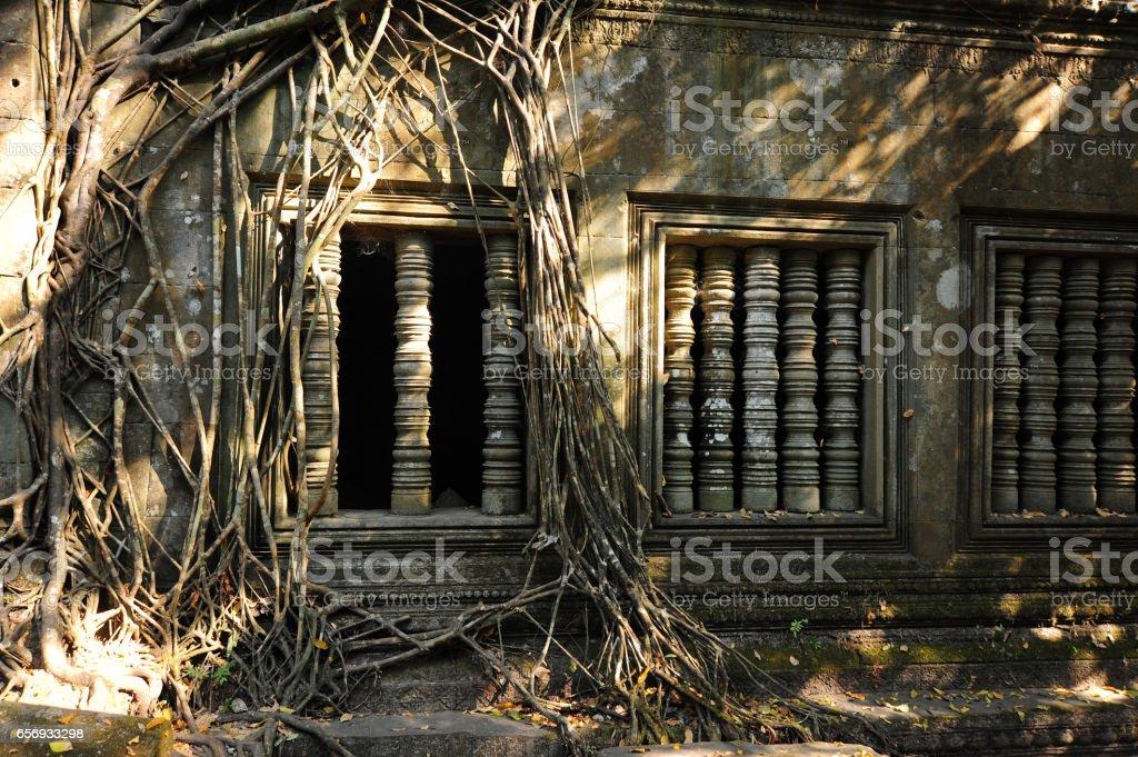Beng Mealea scenery in Angkor, Cambodia stock photo