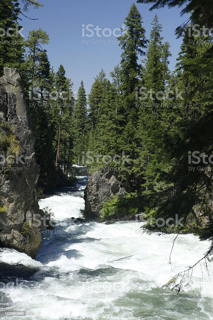 Benham Falls royalty-free stock photo