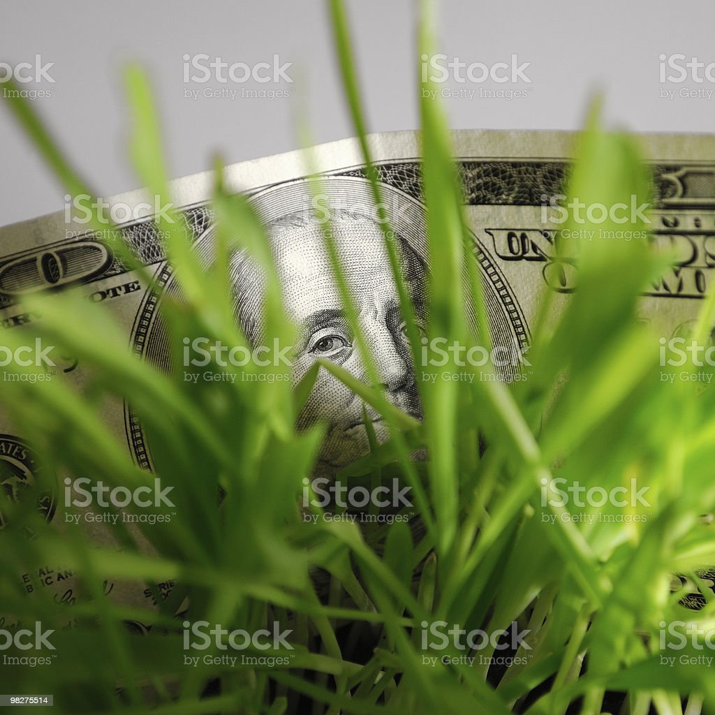 Benjamin Franklin hiding in grass royalty-free stock photo