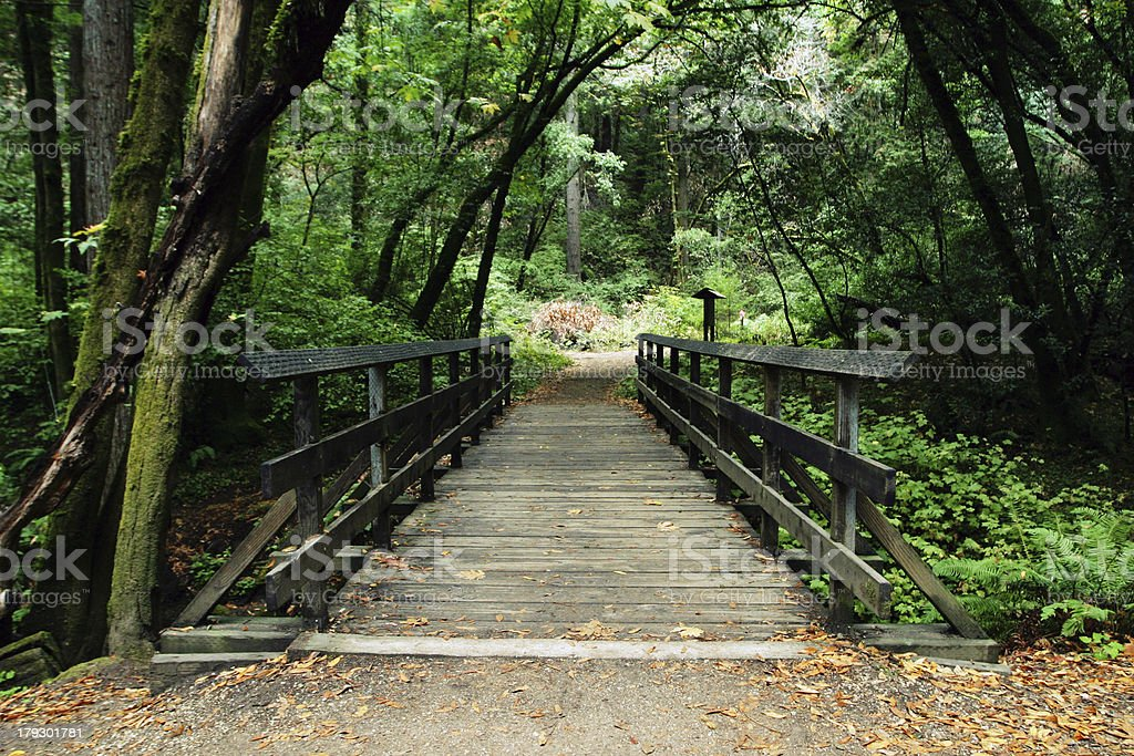 bennet wooden footbridge royalty-free stock photo