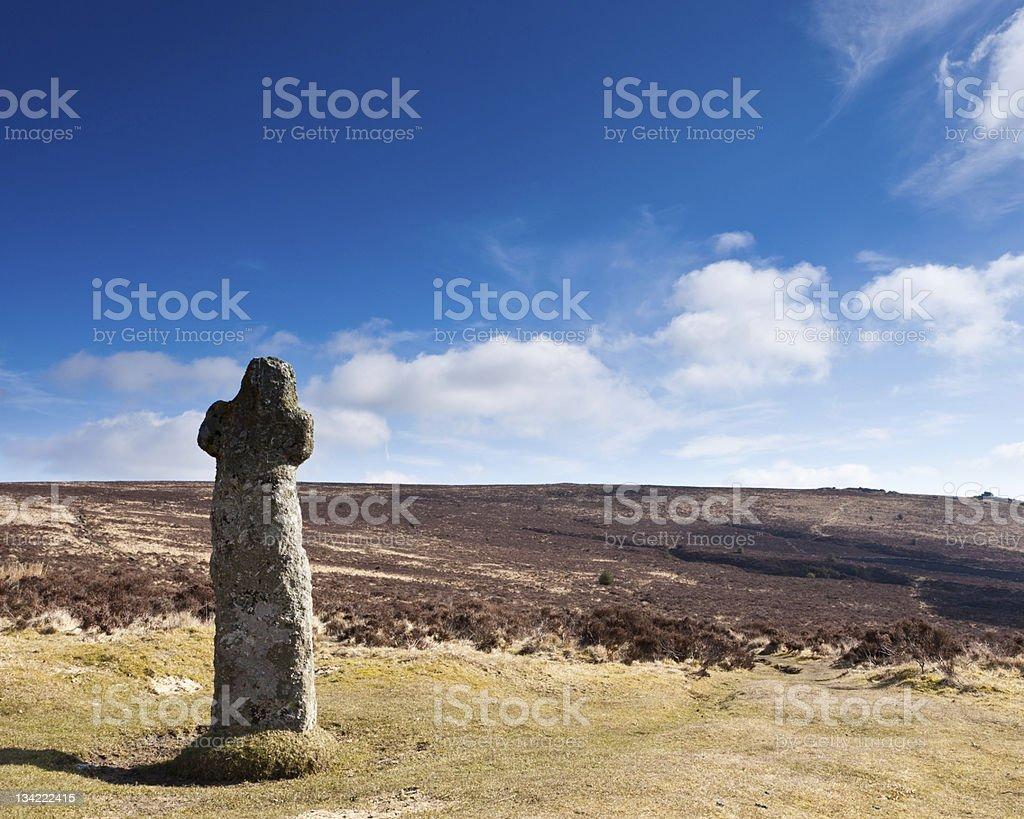 Bennetts le Parc National de Dartmoor photo libre de droits