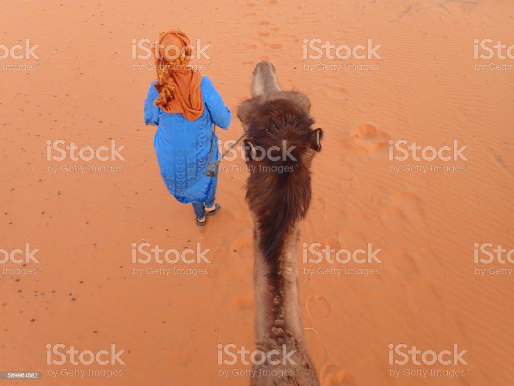 BerberleadingaCameldesert stock photo