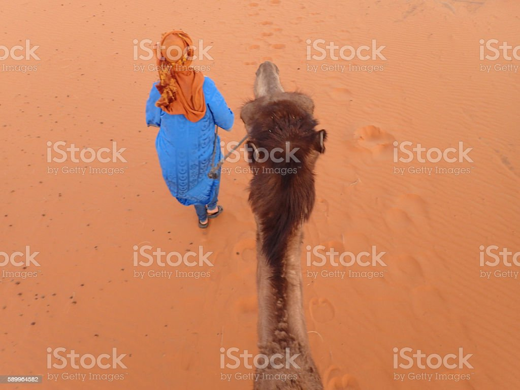 BerberleadingaCameldesert stock photo