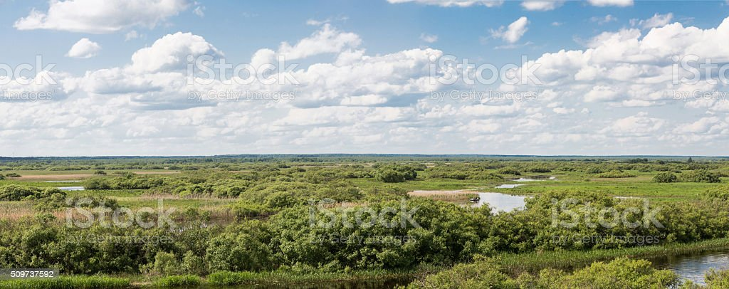 Berezina River, Republic of Belarus stock photo