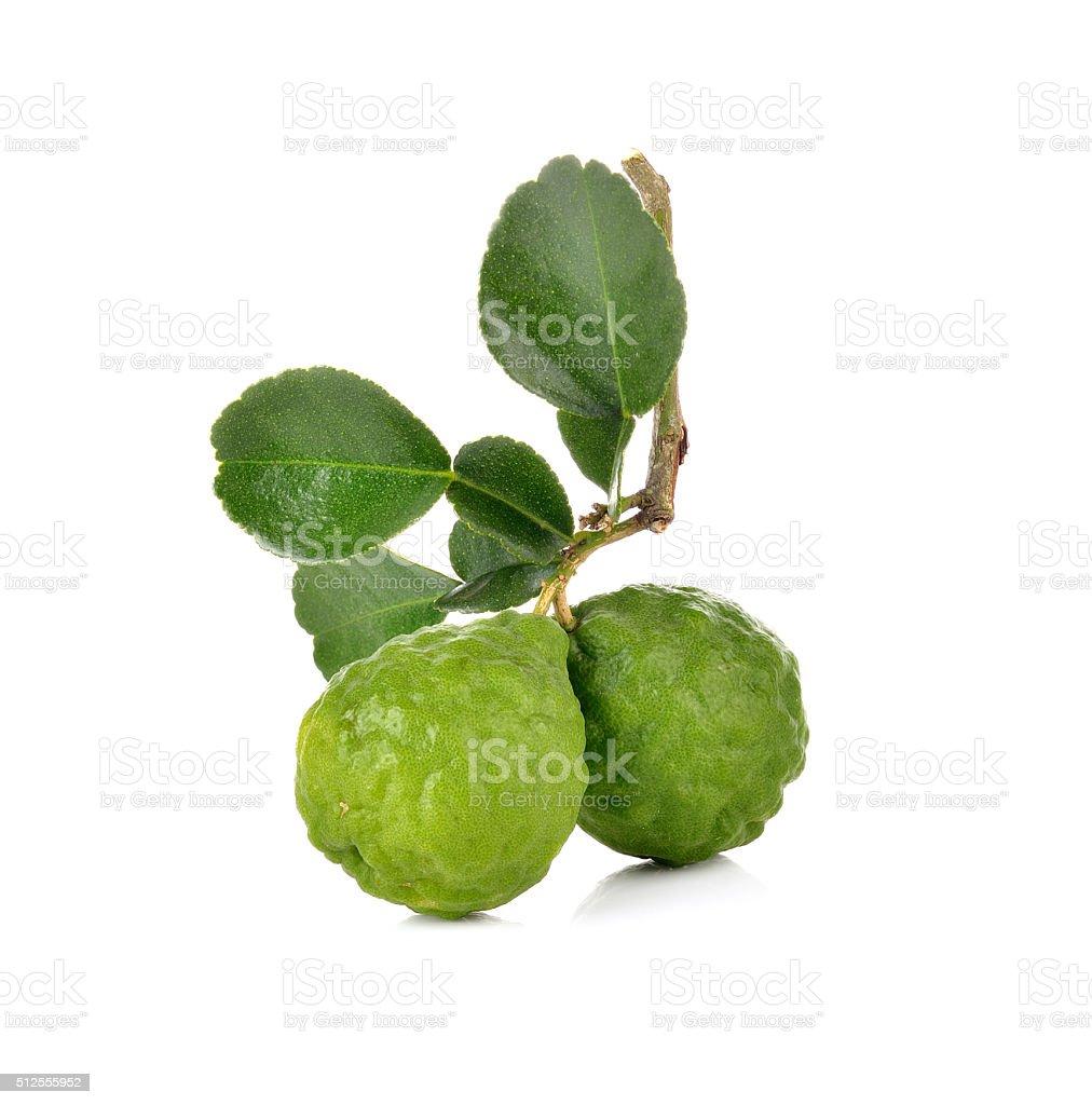 Bergamot fruit on  white background stock photo