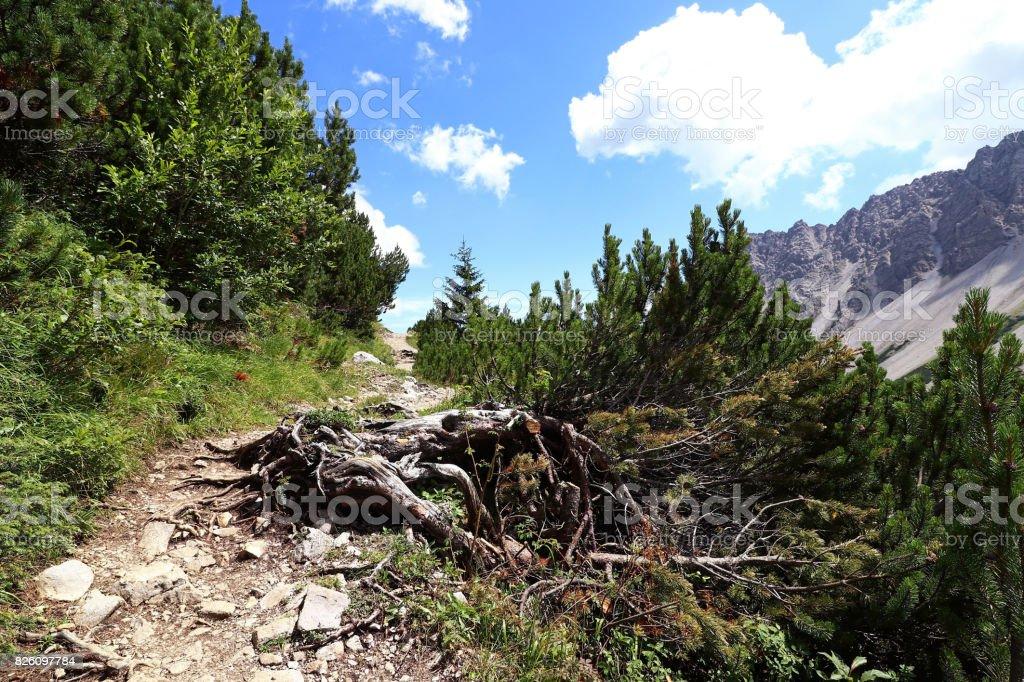 Bergsteigen am Hahntennjoch in Österreich stock photo