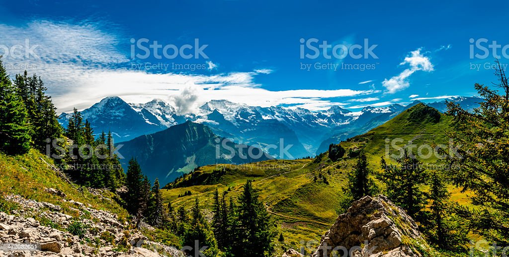 Bernese Alps panorama from Schynige Platte - V stock photo