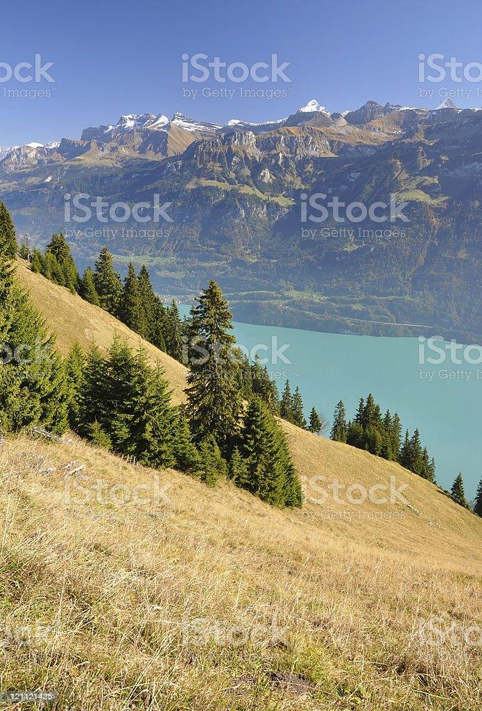 Bernese alps stock photo