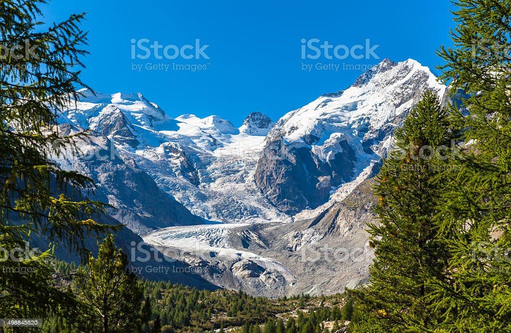Bernina massive and Morteratsch glacier stock photo