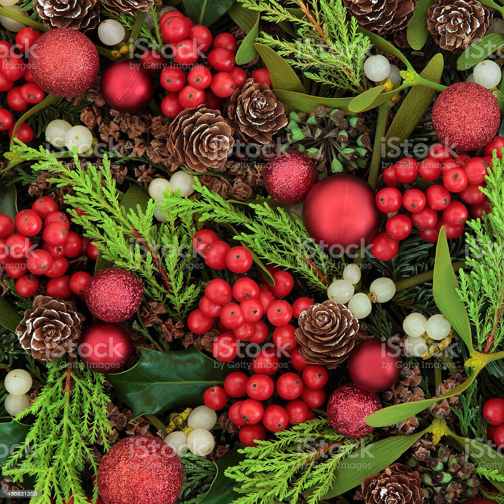 Berries and Baubles stock photo