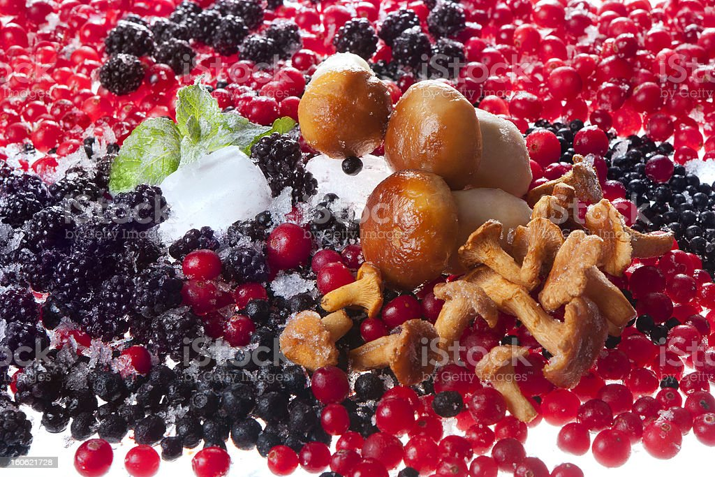 berries and mushrooms royalty-free stock photo