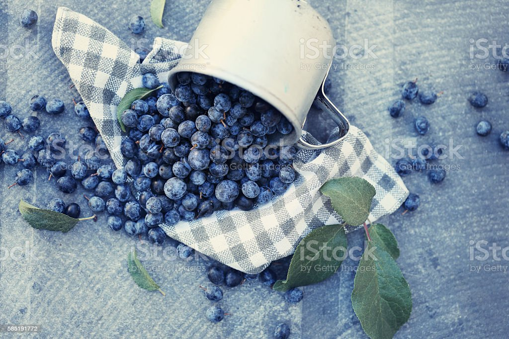 Berries are scattered from the cup stock photo