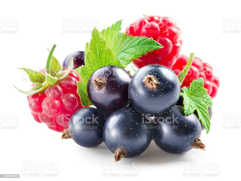 Berries. Black currant with raspberry isolated on white stock photo