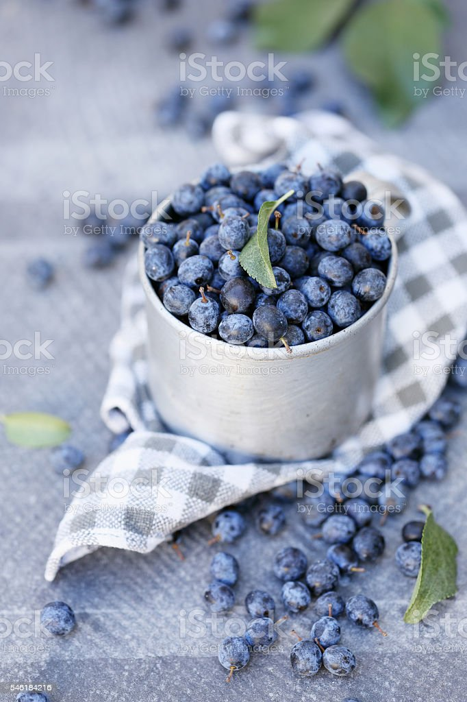 berries in a metal cup stock photo