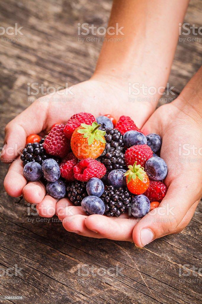 Berries in hands stock photo