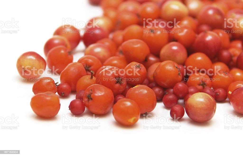 berries isolated on white stock photo
