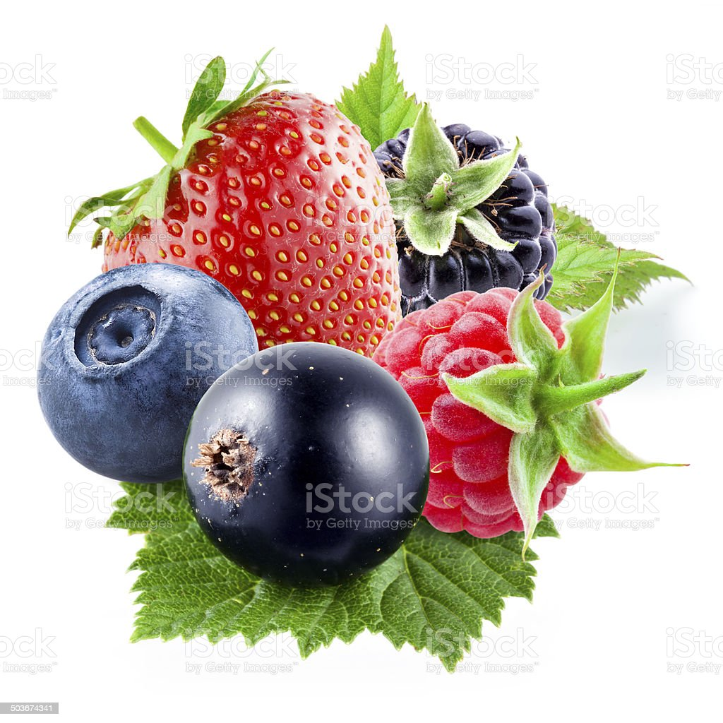 Berries on a white background stock photo