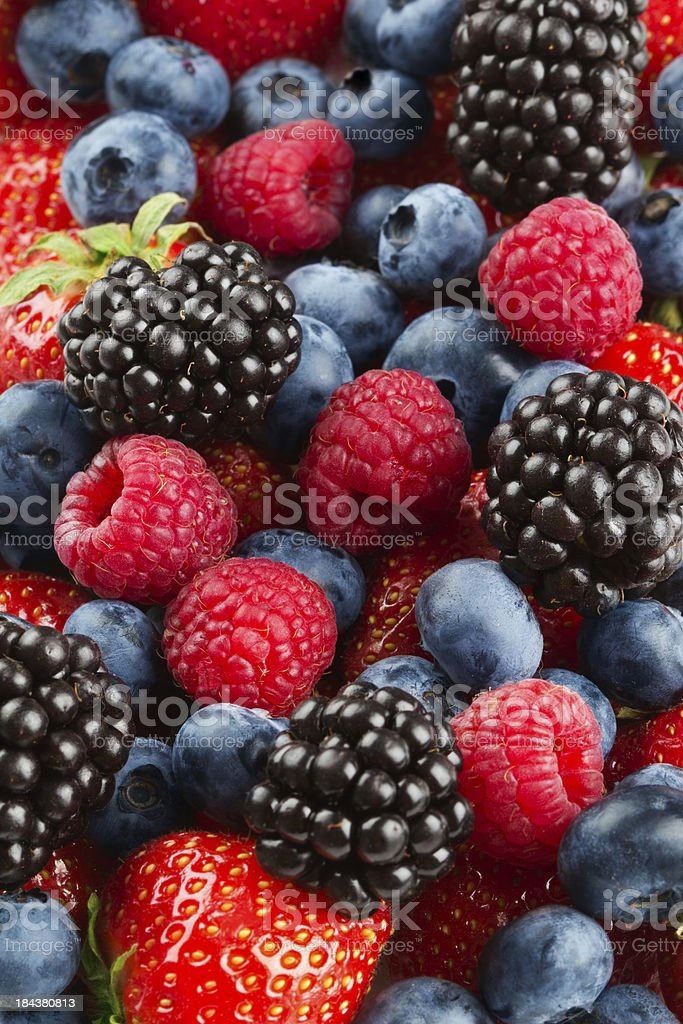 Berries stock photo