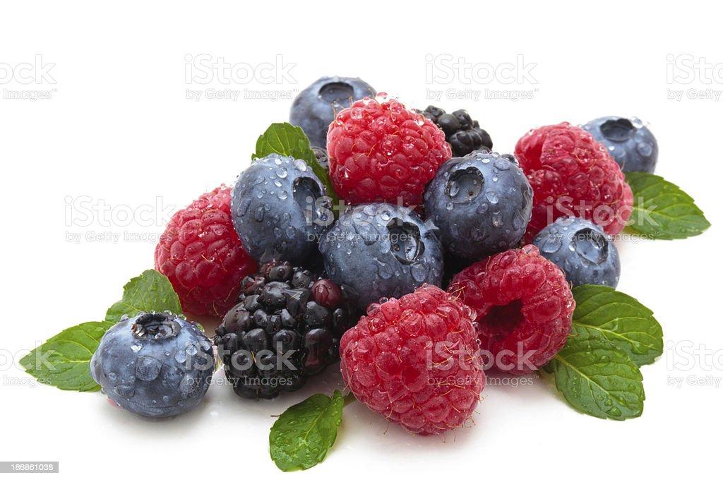 Berries. stock photo