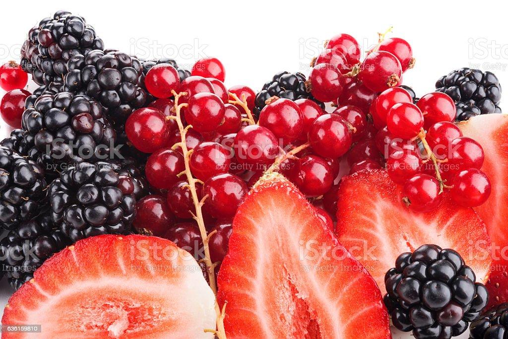Frutti di bosco stock photo