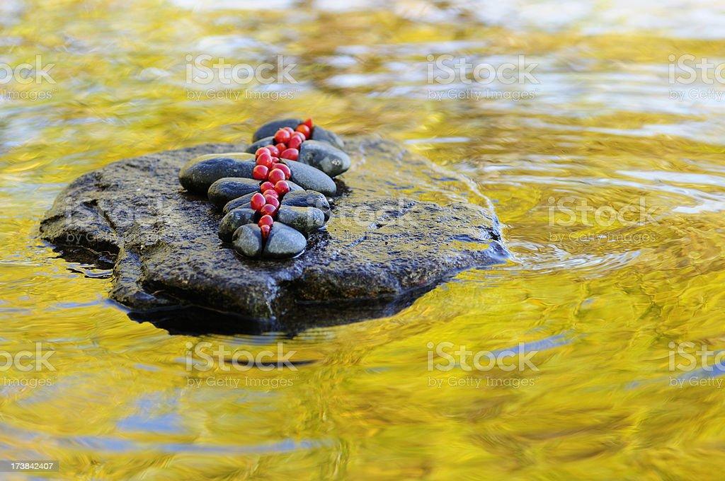 Berries, stone, water, reflection, art stock photo