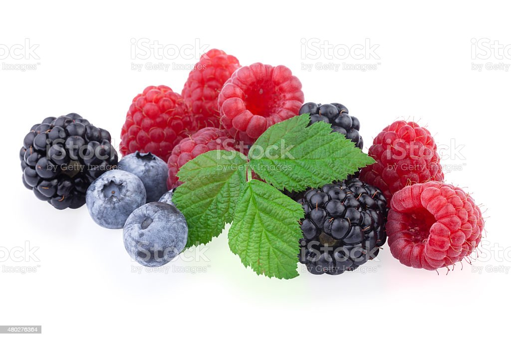 Berries Various Isolated on White stock photo