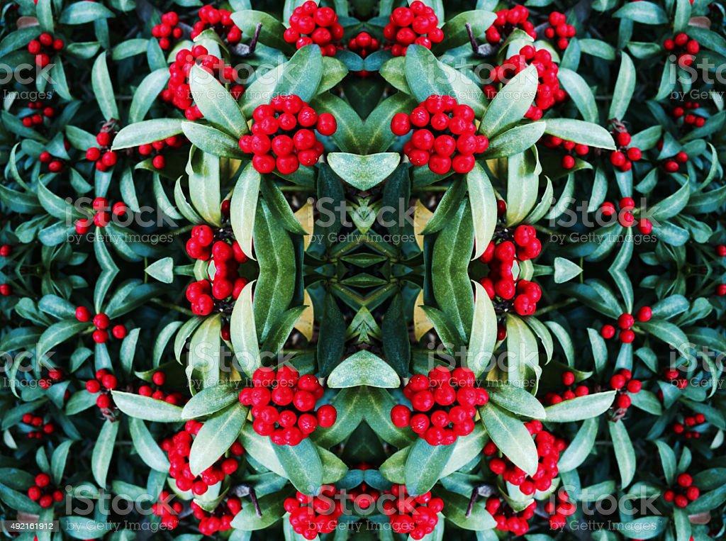 Berry bush kaleidoscope abstract royalty-free stock photo