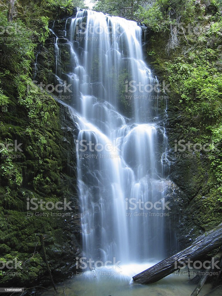 Berry Creek Falls royalty-free stock photo