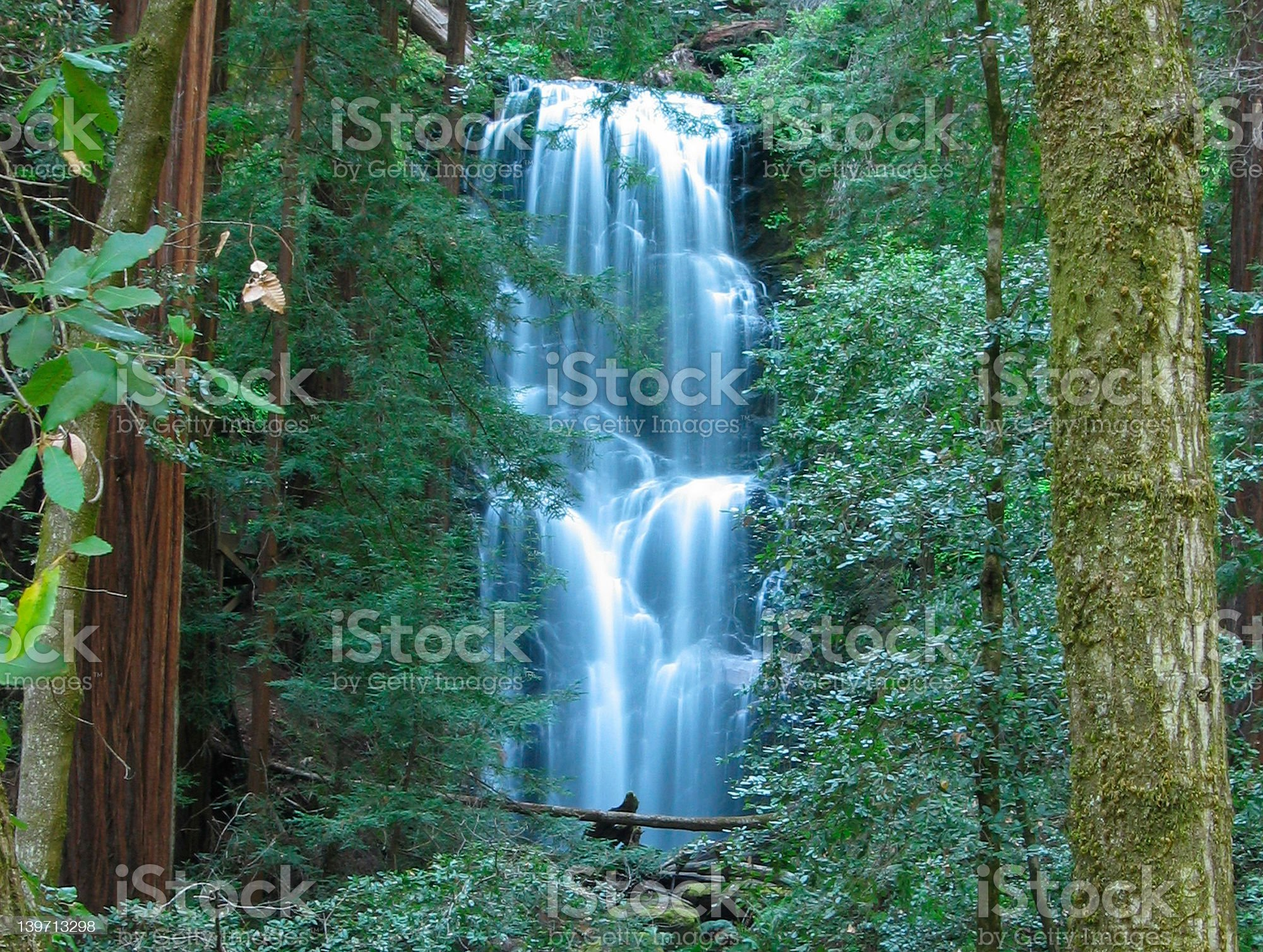Berry Creek Falls royalty-free stock photo