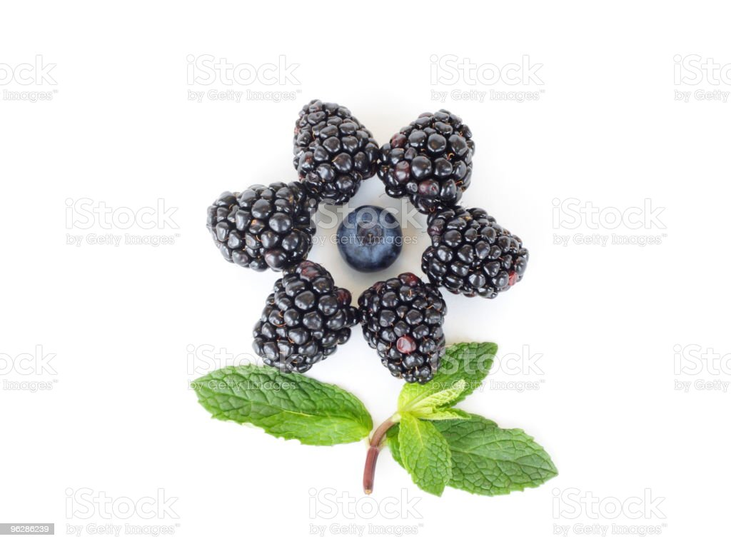 Berry flower royalty-free stock photo