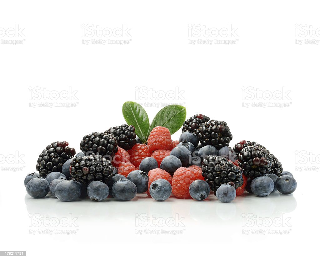 Berry Harvest stock photo