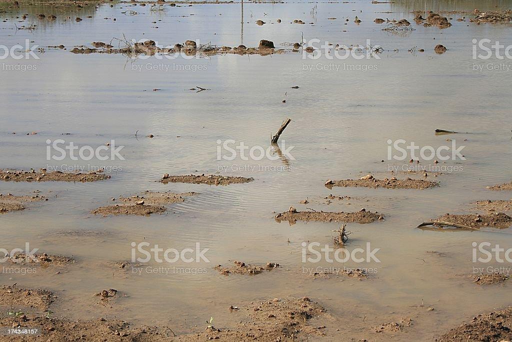 Überschwemmung royalty-free stock photo