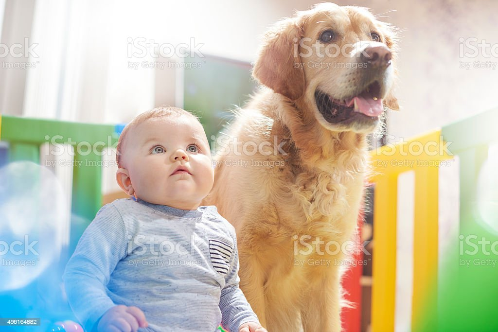 Best buddies stock photo